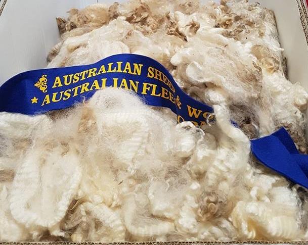 cooper fleece win aws